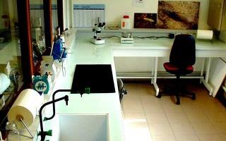 Laboratoire Termites FCBA
